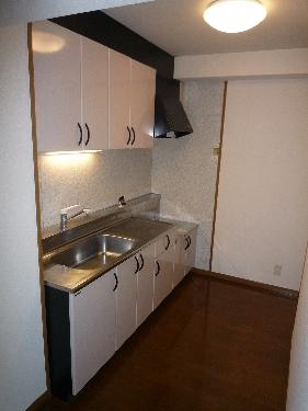 フルール98 / 202号室キッチン