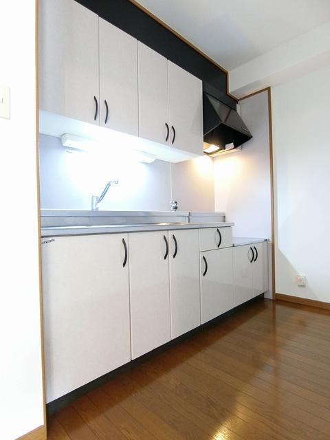 ルミエール'98 / 102号室キッチン