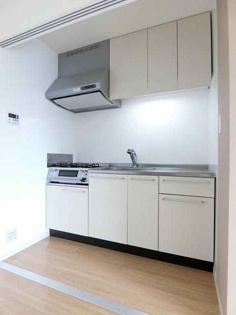 ブライトンハウス(ペット可) / 202号室キッチン