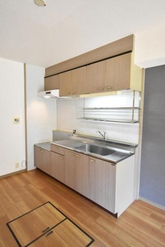 ドミール水城 / 102号室キッチン