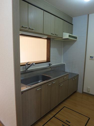 ドミール水城 / 301号室キッチン