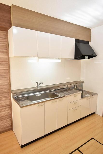 エクセレント中嶋Ⅱ / 101号室キッチン