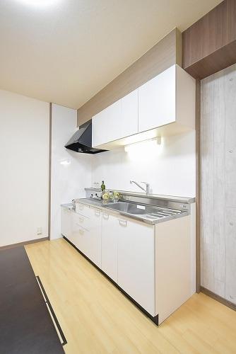エクセレント中嶋Ⅱ / 102号室キッチン