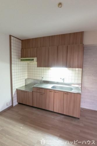 エクセレント中嶋Ⅱ / 305号室キッチン