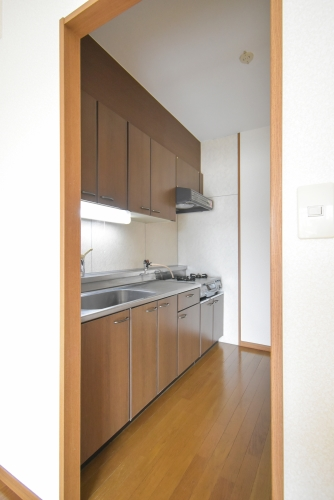 シャルム瑞雲 / 302号室キッチン