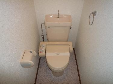 シャトレ弐番館 / 402号室トイレ