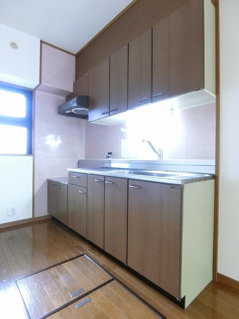 アネックスけやき通り / 103号室キッチン