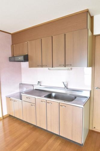 アネックスけやき通り / 205号室キッチン