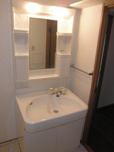 レジデンス俗明院 / 402号室洗面所