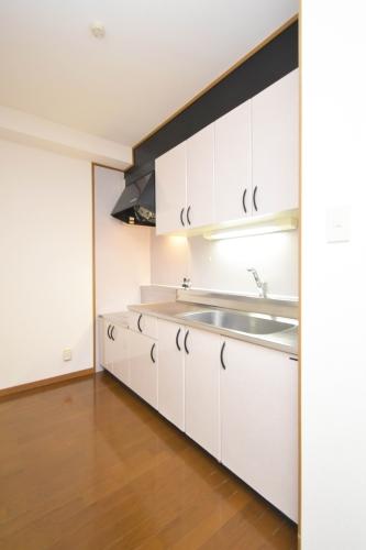 ルミエール'98 / 306号室キッチン