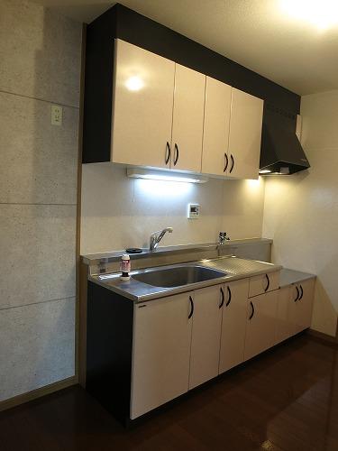 エクセレント中嶋Ⅲ / 305号室キッチン