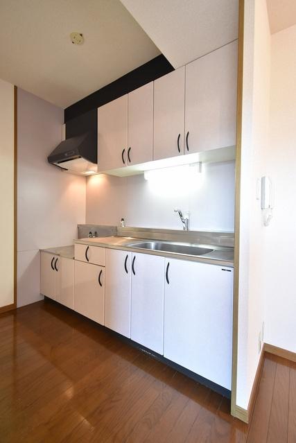 グランドゥール祥雲 / 402号室キッチン