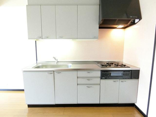 ディナスティⅧ / 201号室キッチン
