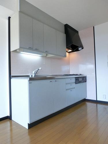 ディナスティⅧ / 206号室キッチン
