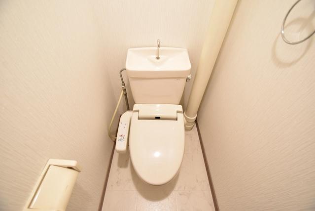 エステート杉塚 / 205号室トイレ