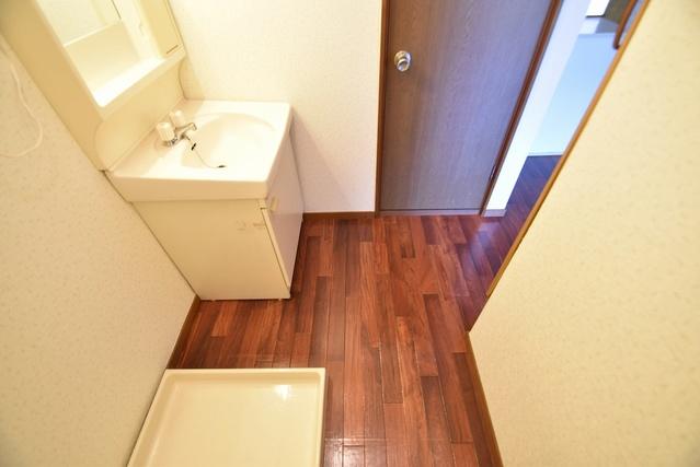 ドリームハウスHARA5(ペット可) / 503号室洗面所