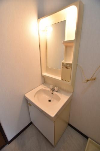 ドリームハウスHARA3(ペット可) / 302号室洗面所