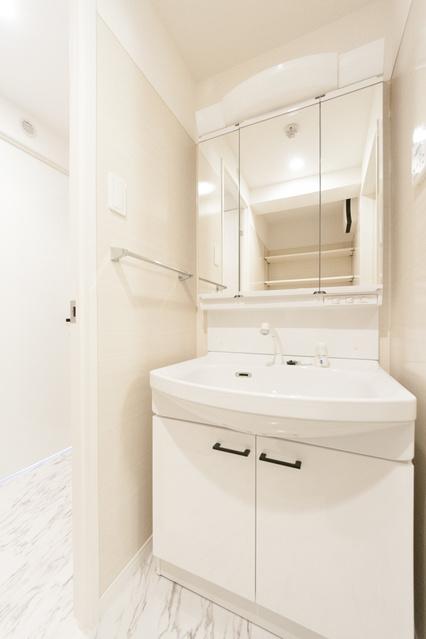 リュードゥルポ / 301号室洗面所