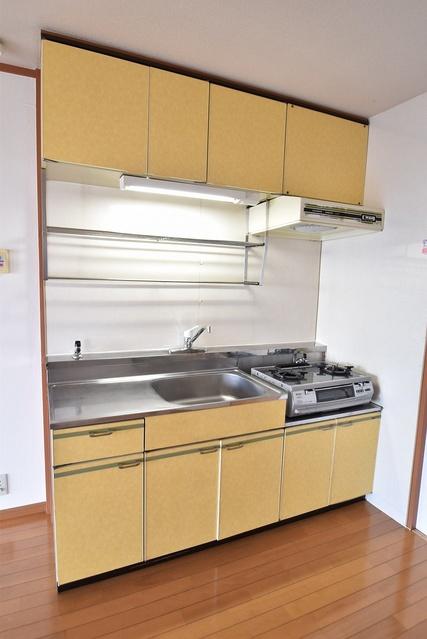 シャトレ針摺 / 305号室キッチン