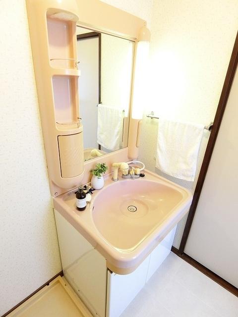シャトー渡辺 / 303号室洗面所