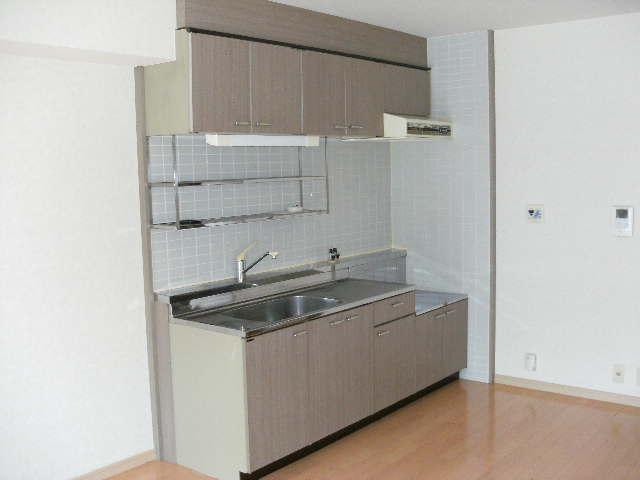 ドミール水城 / 203号室キッチン