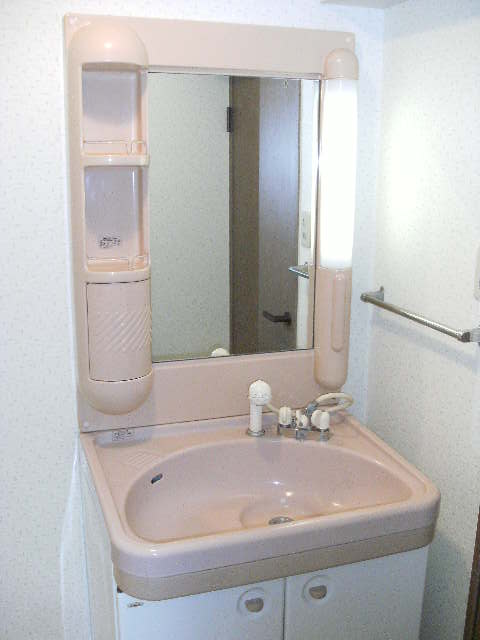 シャトレ針摺Ⅱ / 401号室洗面所