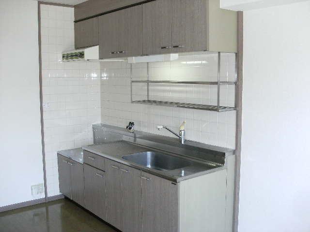 シャトレ針摺Ⅱ / 403号室キッチン