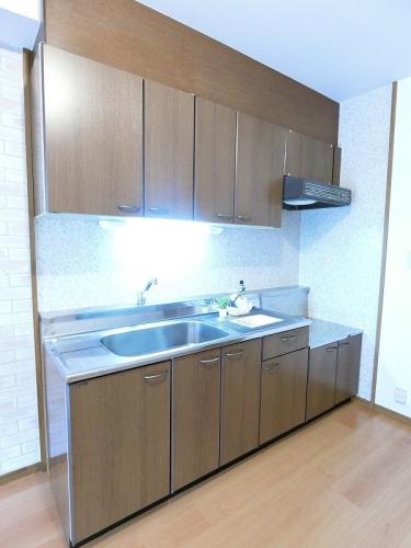 シャトレ参番館 / 103号室キッチン