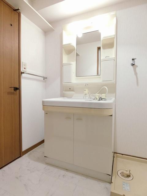 シャトレ天拝 / 401号室洗面所