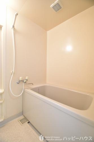 シャトレ天拝 / 603号室洗面所