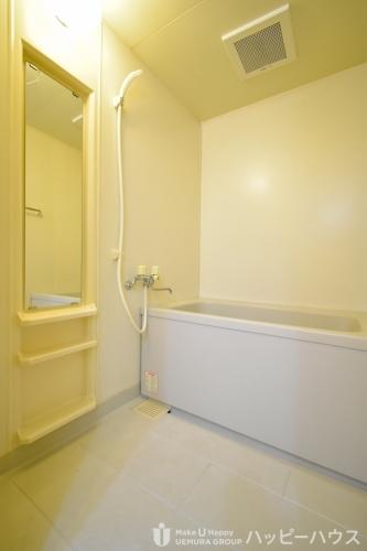 レジデンス俗明院 / 403号室洗面所