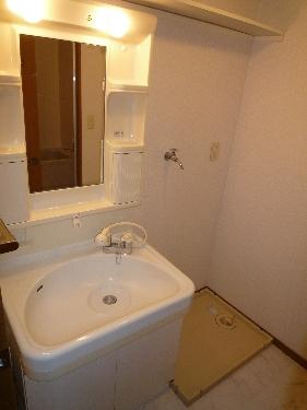 フルール98 / 202号室洗面所