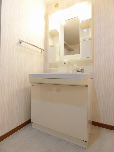 ルミエール'98 / 203号室洗面所