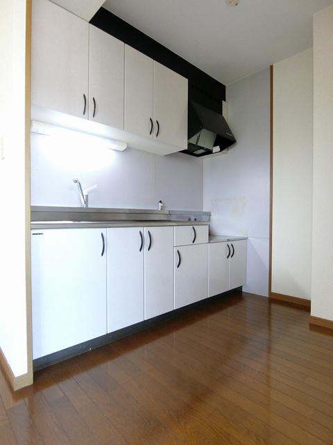 グランドゥール祥雲 / 301号室キッチン