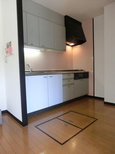 ディナスティⅧ / 102号室キッチン