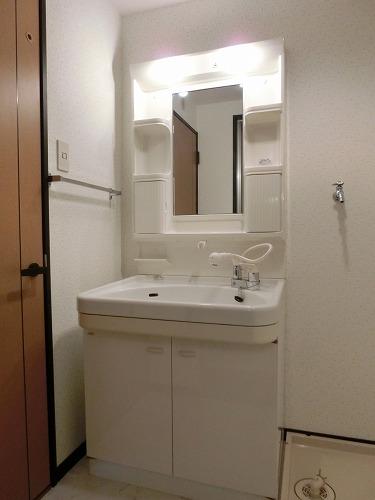 ディナスティⅧ / 206号室洗面所
