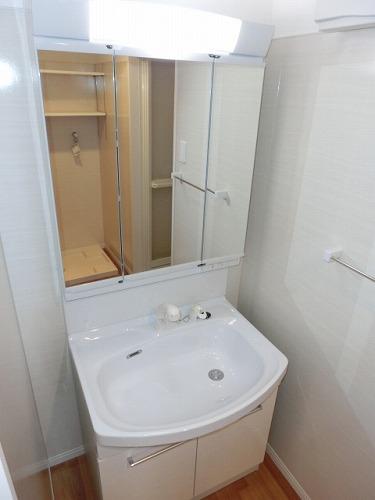 アミューザン水城 / 501号室洗面所