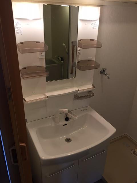 シャトレ針摺 / 205号室洗面所