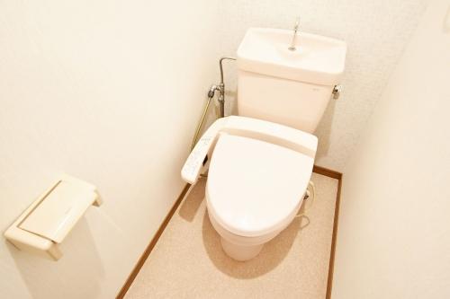 フォーレスト壱番館 / 201号室トイレ