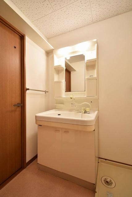 フォーレスト壱番館 / 402号室洗面所