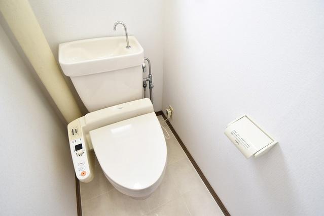 シャトー渡辺 / 203号室トイレ