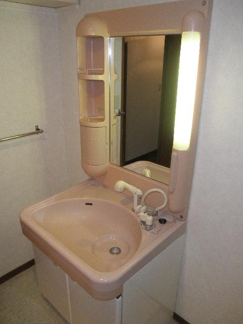コーポユキⅡ / 102号室洗面所