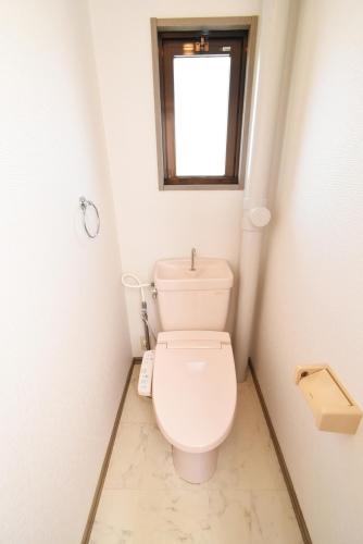 ドミール水城 / 102号室トイレ