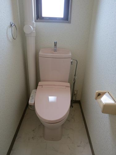 ドミール水城 / 103号室トイレ