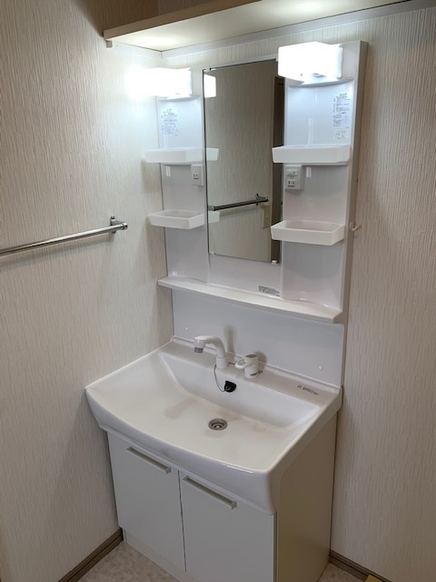 ドミール水城 / 203号室洗面所