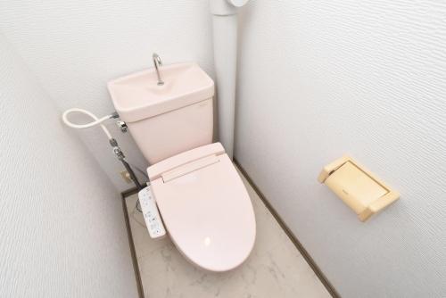 ドミール水城 / 302号室トイレ