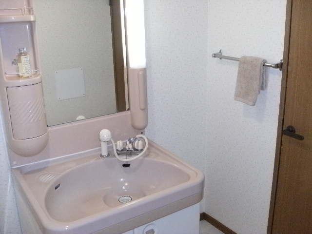 サンハイツ公園通り / 207号室洗面所