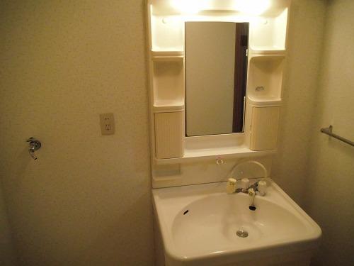 エクセレント中嶋Ⅱ / 102号室洗面所