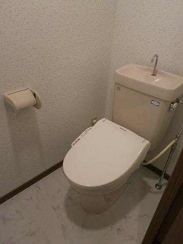 グランドソフィア20 / 202号室トイレ