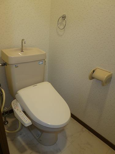 グランドソフィア20 / 401号室トイレ